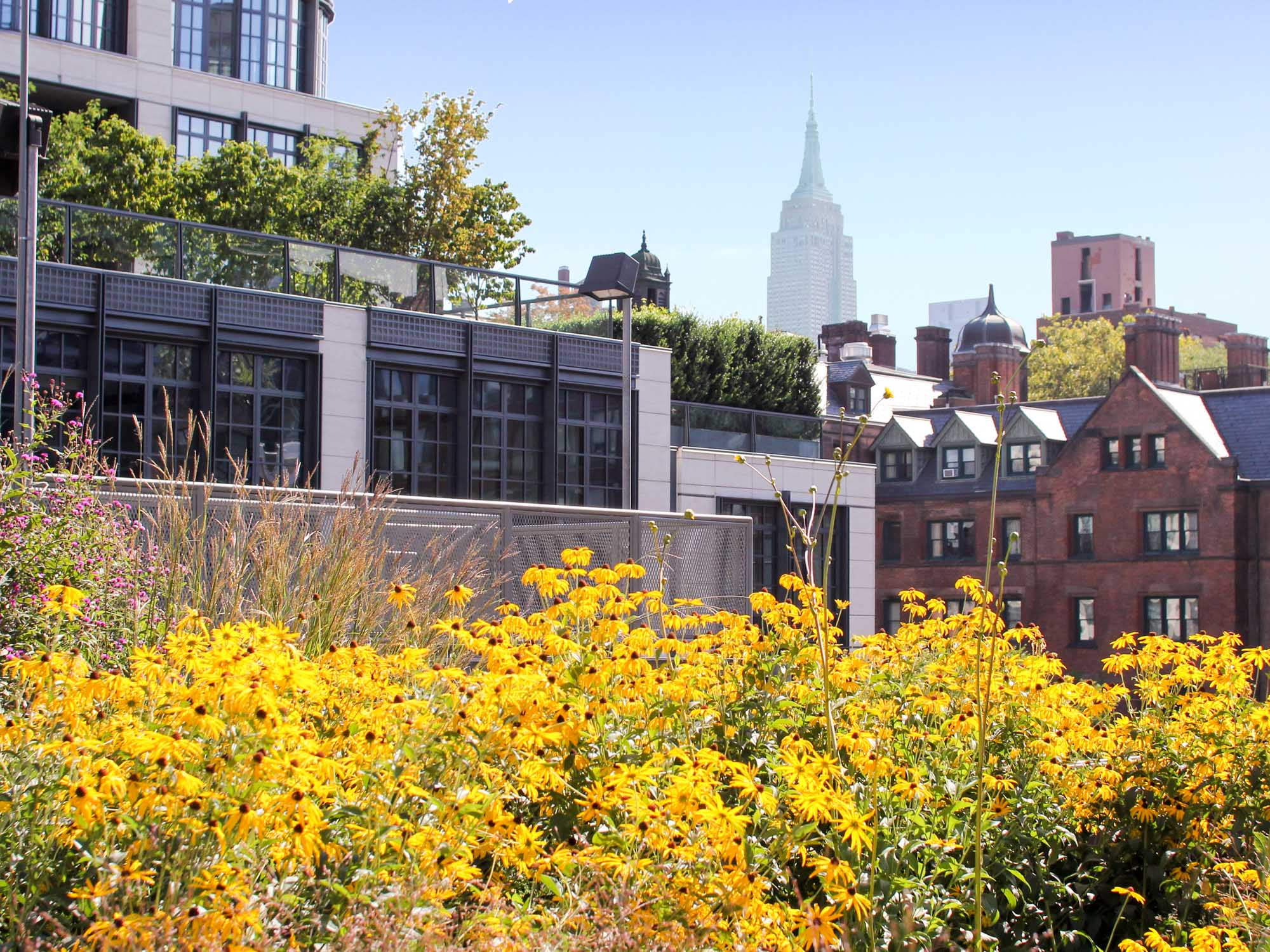 A view of the Empire State Building from the High Line