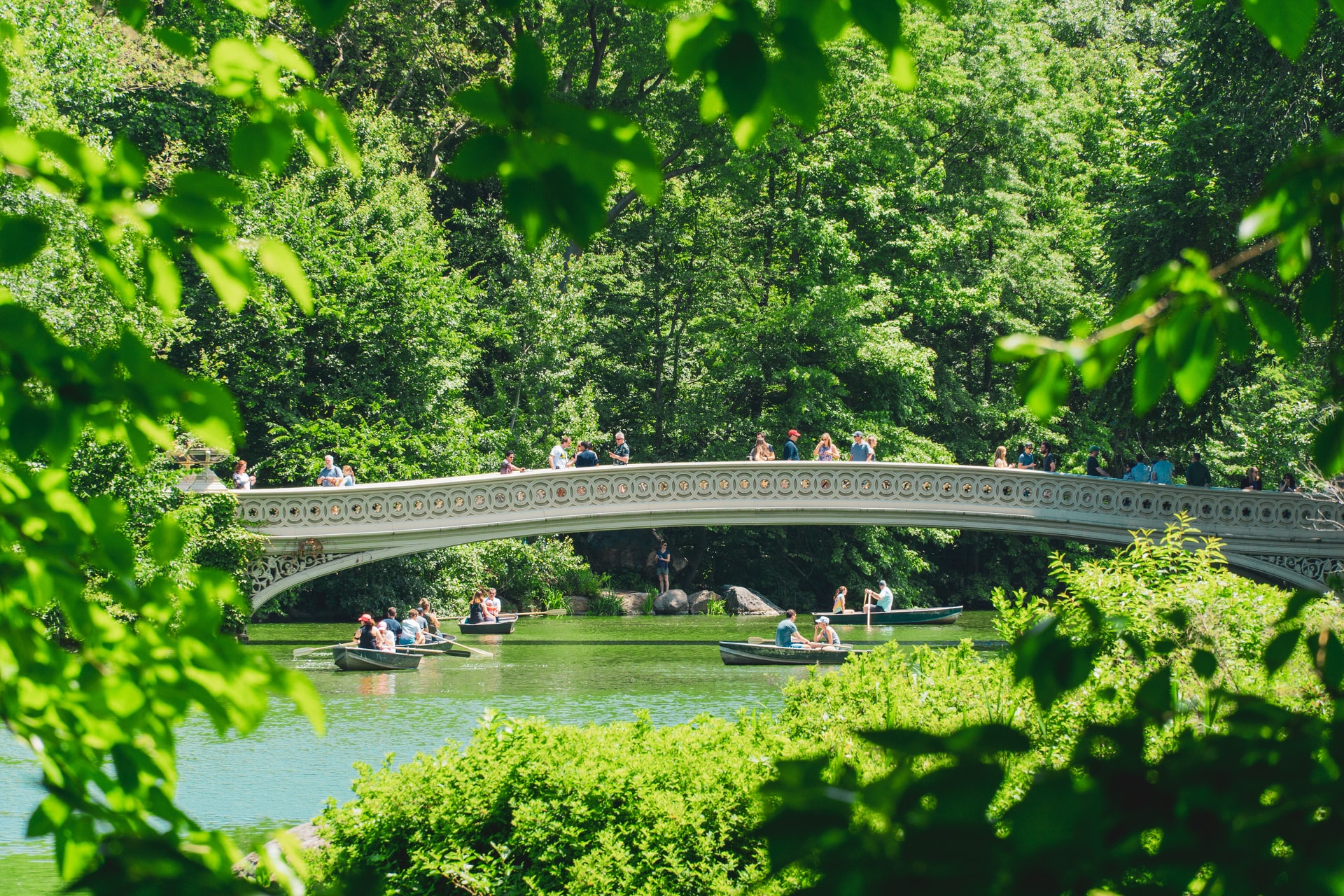 People rowing boats in the lake at Central Park