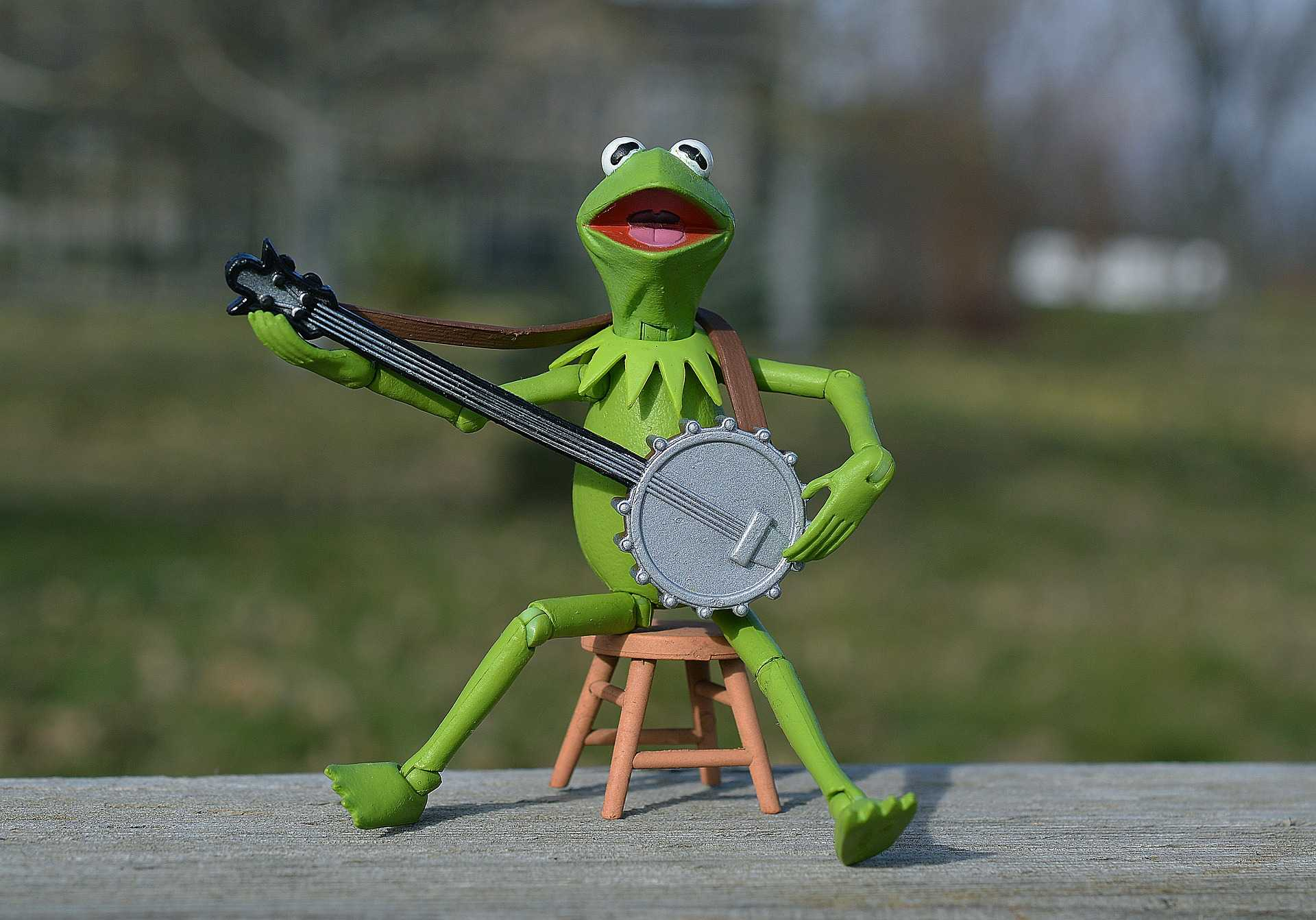 Toy frog with guitar