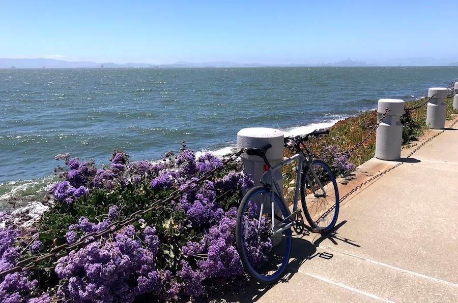 Bike trail near Alameda Beach