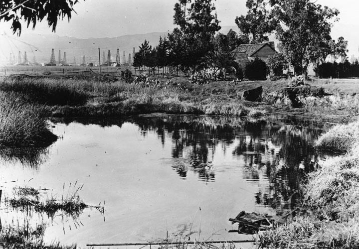 La Brea Tar Pits Historic Photo
