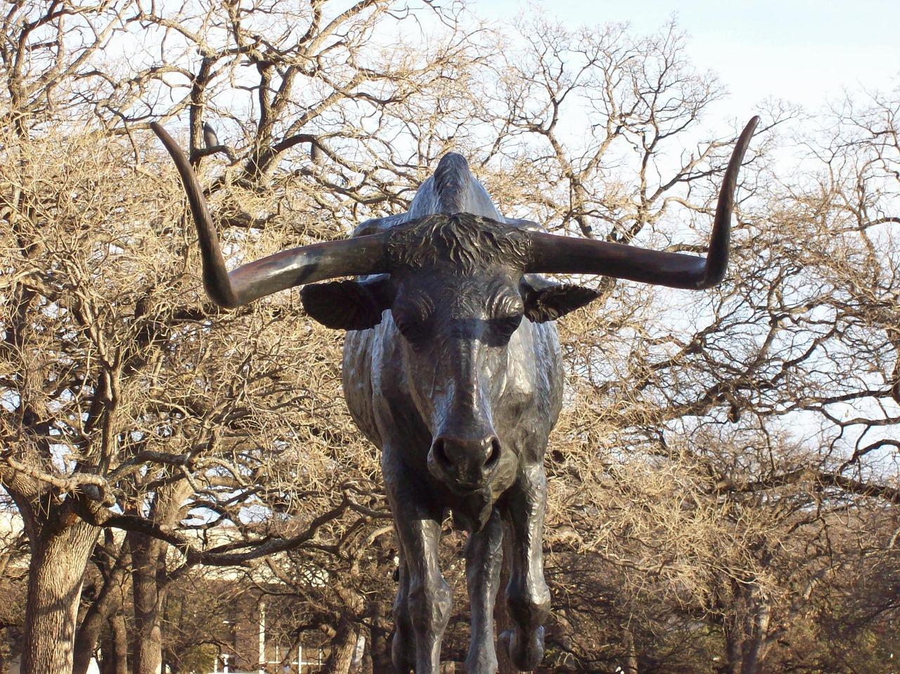Bronze sculpture of a bull in Pioneer Plaza