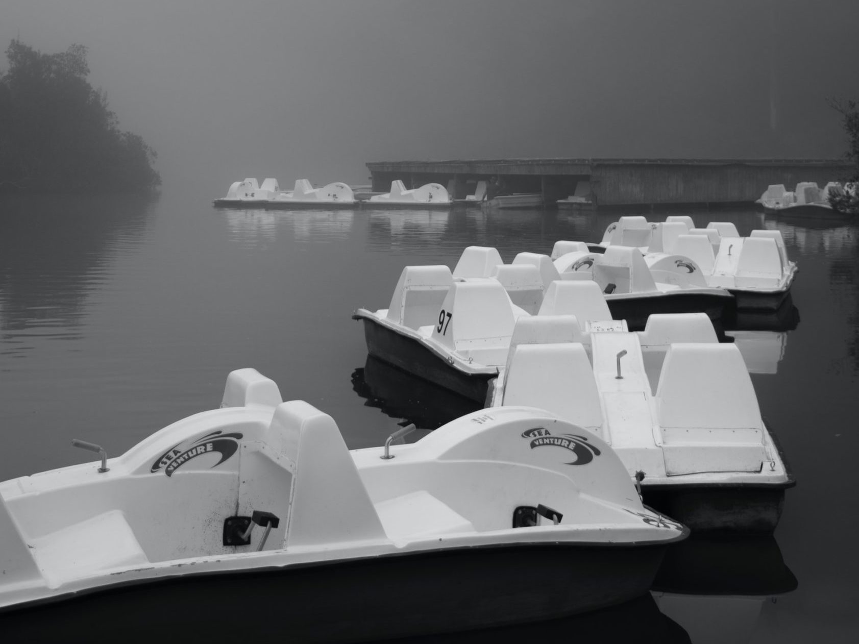 Paddle boats in the fog on Stow Lake inside Golden Gate Park