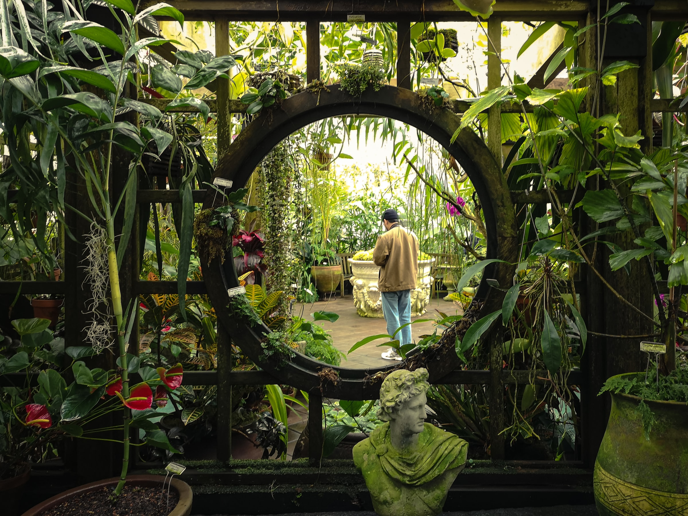 Conservatory of Flowers, one of the things to see inside Golden Gate Park