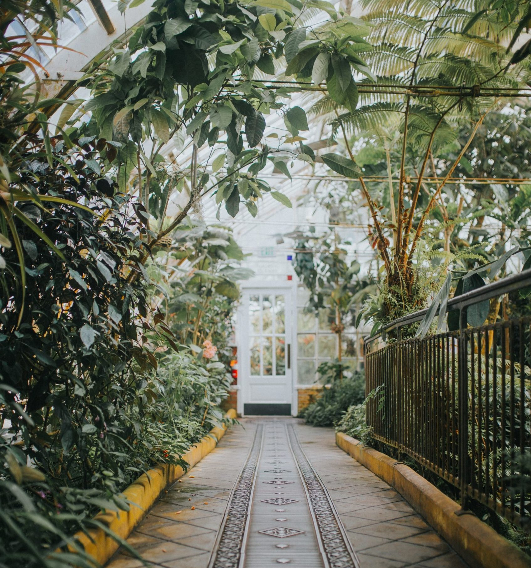 a walkway inside the Conservatory at Golden Gate Park