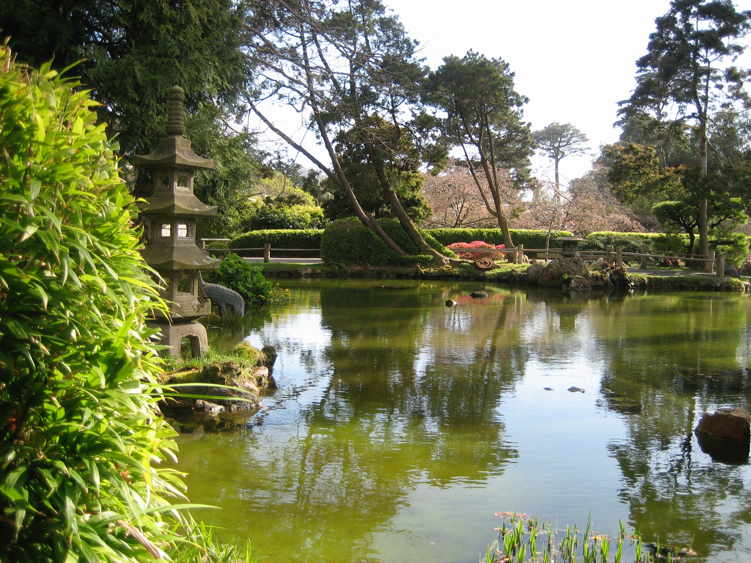 A view of the Japanese Garden