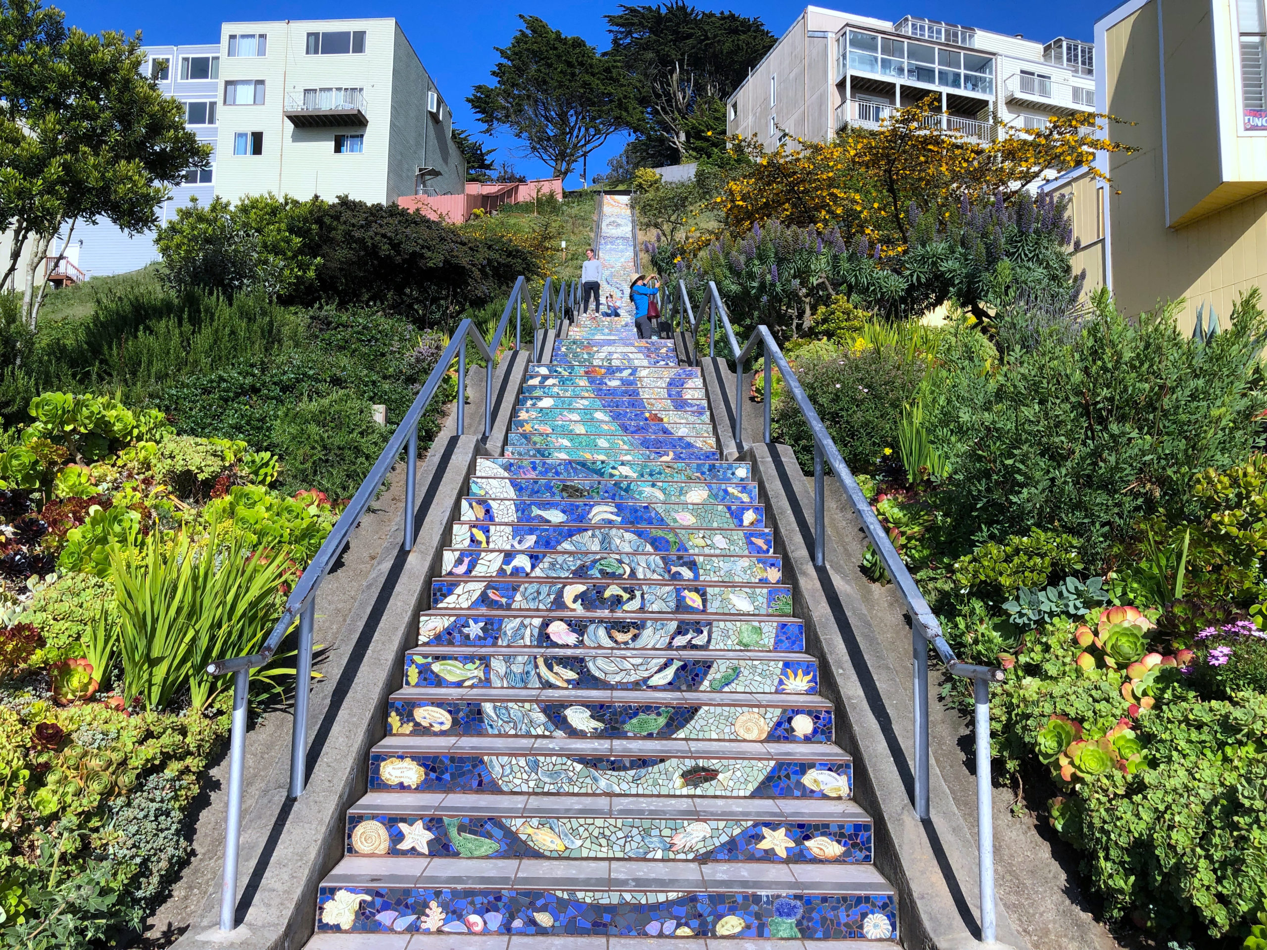 16th Avenue Tiled Steps with mosaic art