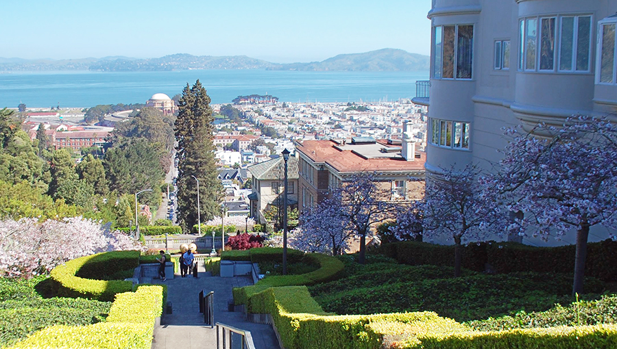 Lyon Street Steps in San Francisco
