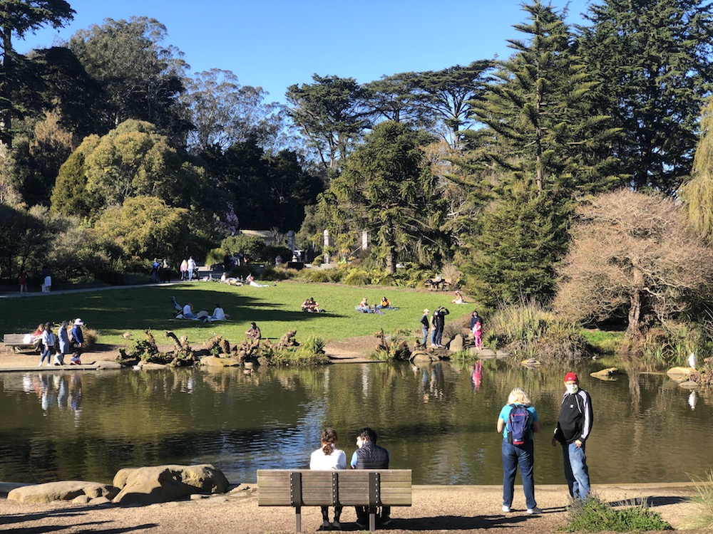 Valentine's Day picnics and recreation in the San Francisco Botanical Garden