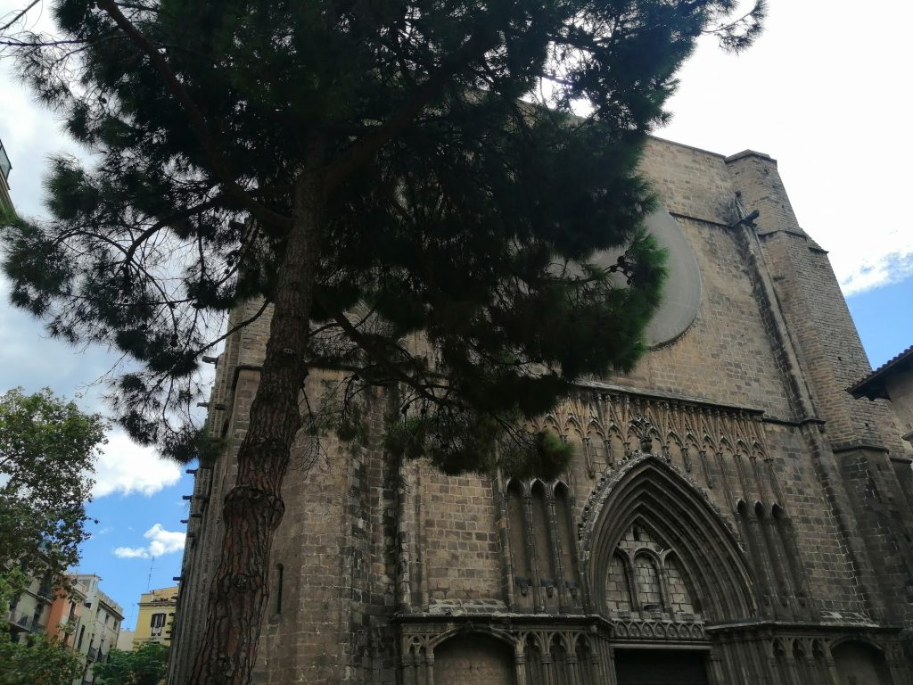 The Church of Holy Mary of the Pine