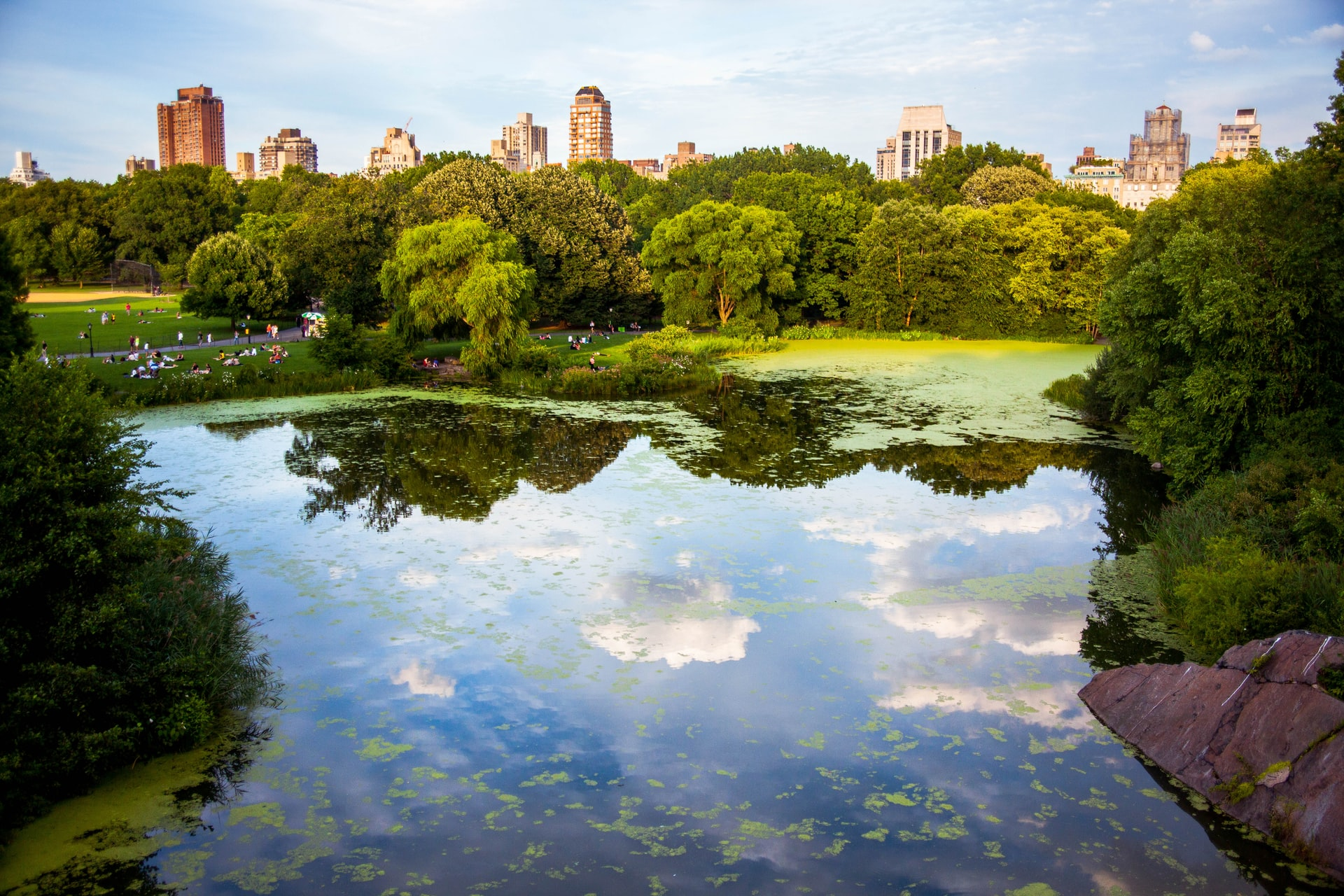 Central Park with lake in foreground and skyline in background